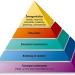 Maslow_fele_piramis
